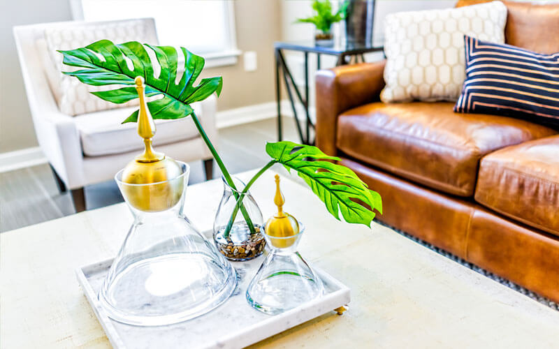 brown leather couch with plants on a table